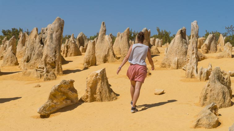 the pinaccles desert west australië