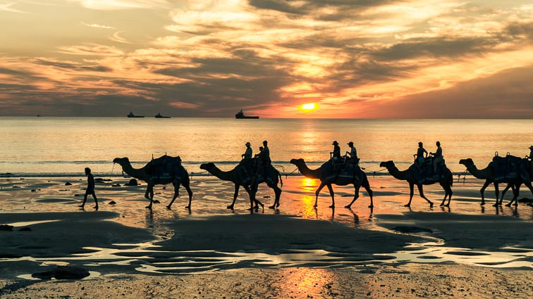 Kamelentocht op Cable Beach, Broome