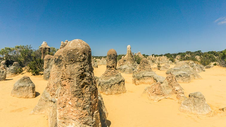 West Australië bezienswaardigheden: The Pinnacles Desert