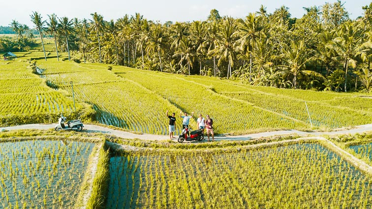 Ubud tips: op de scooter langs rijstvelden