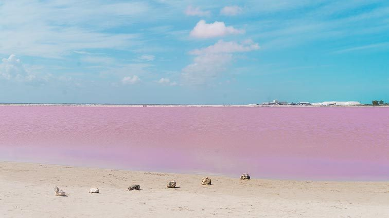 Route Mexico - Roze meer Las Coloradas Mexico